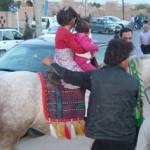 سفری به دل تاریخ یا سیاحت اسب و شتر و الاغ؟! +عکس