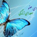 جایگاه دوم استان یزد در زمینه اهدای عضو
