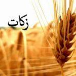 شوراهای زکات در روستاهای پرجمعیت یزد تشکیل شود