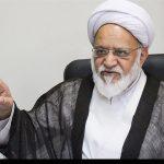 عضویت سپنتا نیکنام در شورای شهر یزد تائید شد