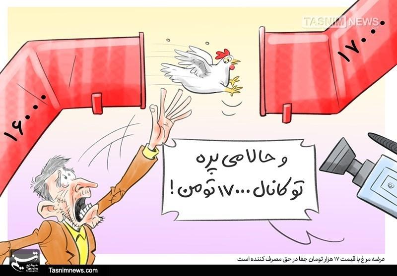 مرغ با قیمت۱۷هزارتومان جفا در حقمصرفکننده