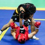 مسابقات ووشو قهرمانی کشور در میبد برگزار می شود