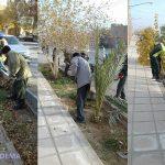 📷 تصاویر/ زیباسازی شهر توسط شهرداری در روزهای گذشته
