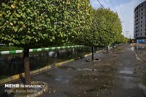 کاهش محسوس دمای هوا در استان یزد