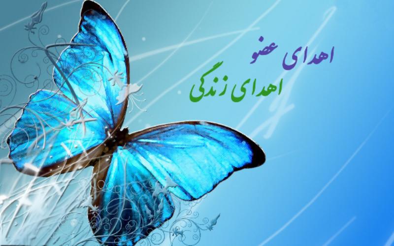 ثبت ۲۰ مورد اهدای عضو از ابتدای سال جاری در استان یزد