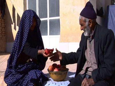 افتخارآفرینی روحانی فیلمساز میبدی در هفتمین جشنواره مردمی فیلم عمار
