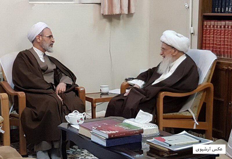 مدیر حوزه های علمیه با آیت الله العظمی صافی دیدار کرد