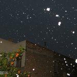 گلچینی از تصاویر مخاطبین میبدما از بارش برف در میبد