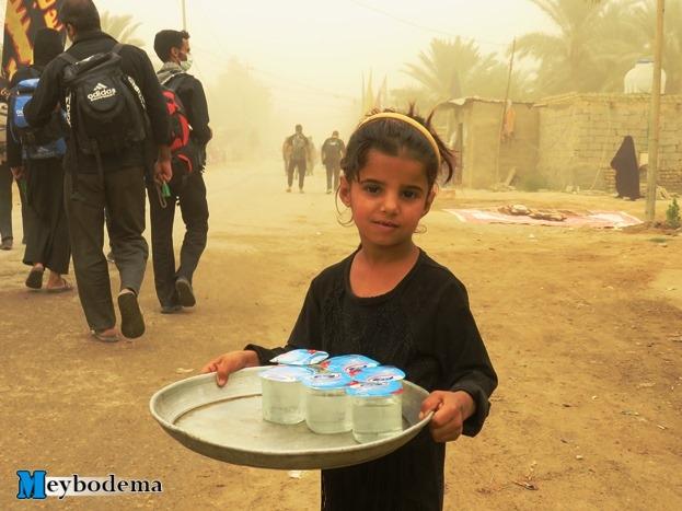 گزارش تصویری از پیاده روی نجف تا کربلا در ایام اربعین/ بخش چهارم تصاویر