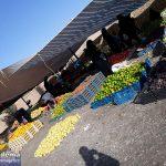 📸تصاویری از بازار میوهفروش ها در پنجشنبهبازار میبد
