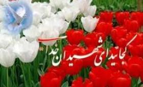 برگزاری یادبود شهیدان آقایی، دهقانی و شمسی در میبد